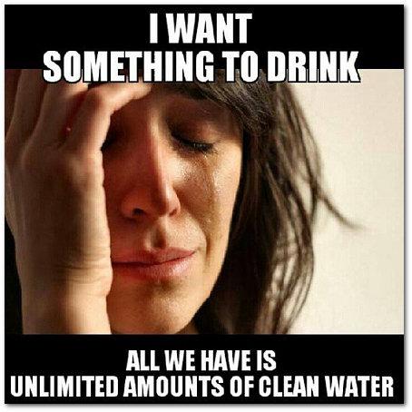 drunken dodo daily dose watery grave meme